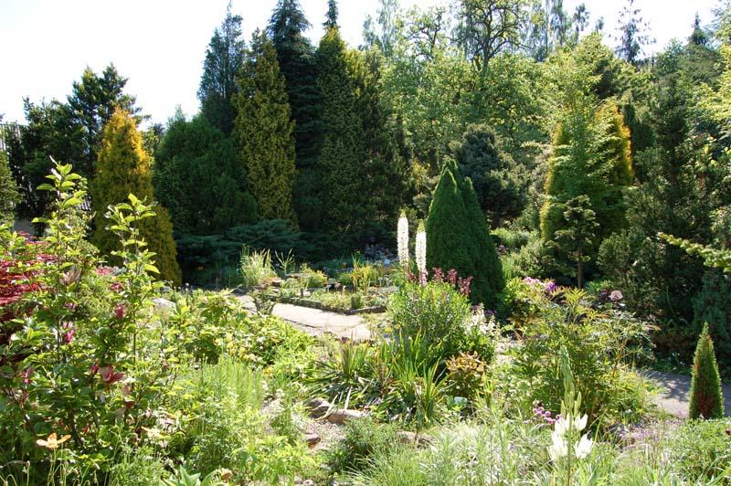 gołubie ogród